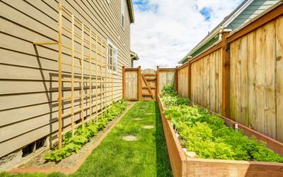 Jak zagospodarować wąski ogród?
